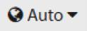 Auto Language Icon